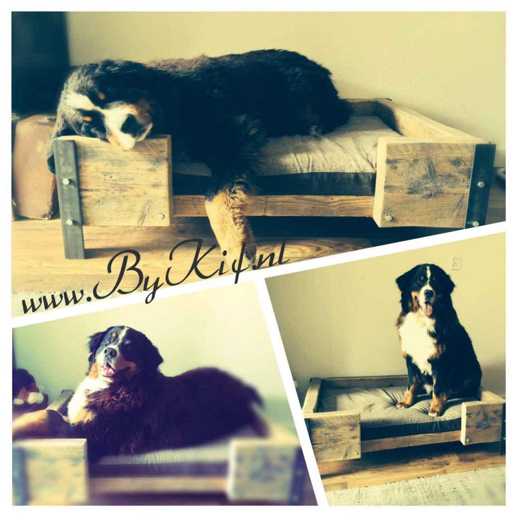 Hondenmand-van-steigerhout